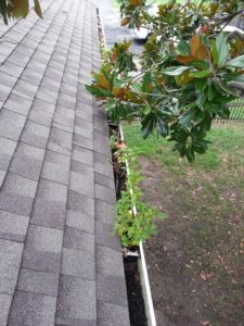 norfolk roof maintenance gutters 02