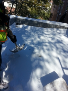 We were preparing this roof in Norfolk to be replaced the next day by removing all of the snow.